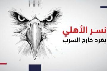 نسر الأهلي يغرد خارج السرب.. و7 أبطال في 62 عاما بالدوري المصري